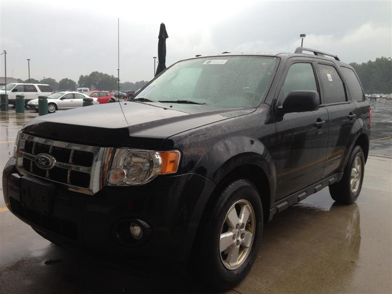 offers used car for sale 2010 ford escape xlt. Cars Review. Best American Auto & Cars Review
