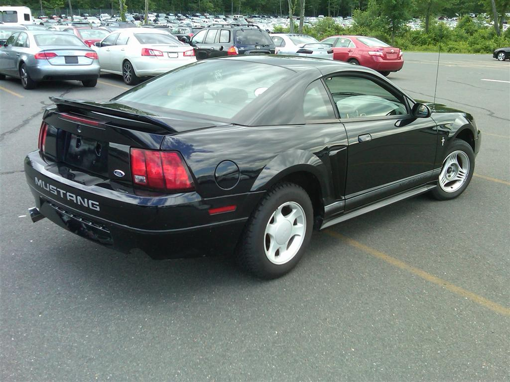 2000 ford mustang coupe for sale in brooklyn ny. Cars Review. Best American Auto & Cars Review