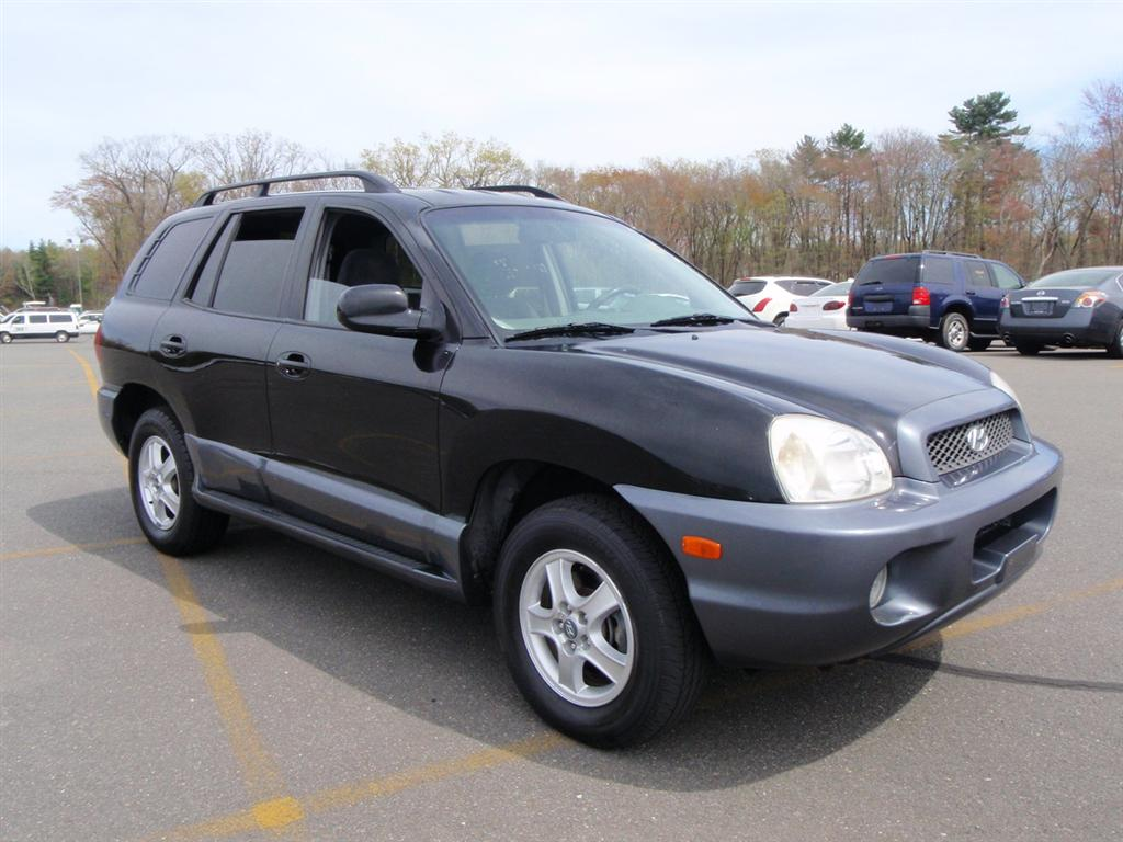 2004 hyundai santa fe for sale used 2004 hyundai santa. Black Bedroom Furniture Sets. Home Design Ideas